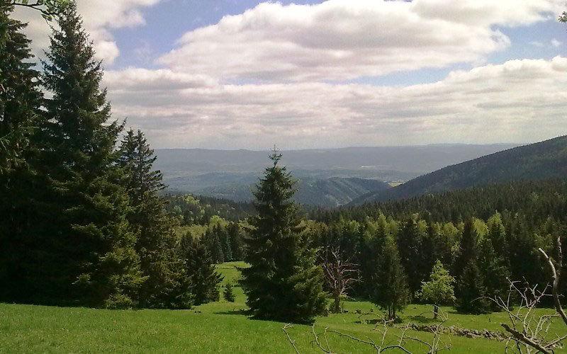 Charakteristika lesní správy Horní Blatná